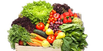 2020 Florida Postharvest Horticulture Tour