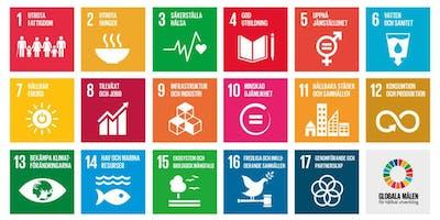Grundläggande CSR-utbildning i Halmstad