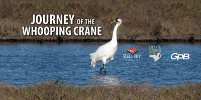 Journey of the Whooping Crane Premiere Screening