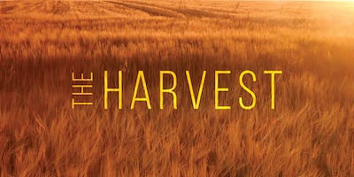 THE HARVEST - Main Stage