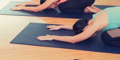 Yoga Probekurs