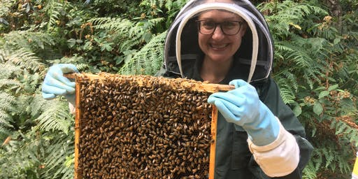 Beekeeping Experience Day