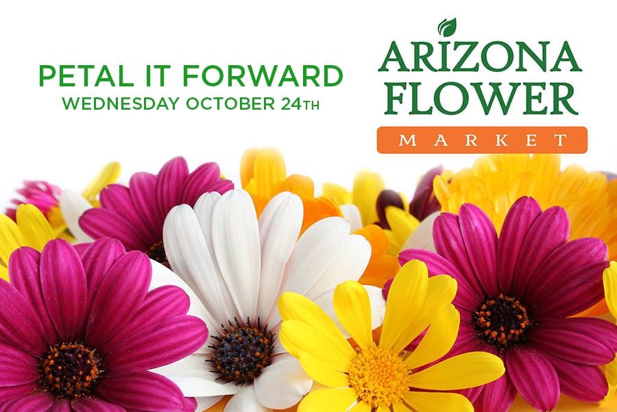 Petal it Forward Free Flower Giveaway!