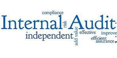 Internal Audit 201: Internal Audit Senior - Bloomington, MN - Yellow Book & CPA CPE tickets