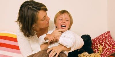 ONLINE Workshop: Hitting, Biting, and Pushing: Managing Challenging Behavior in Young Children(Preschool)