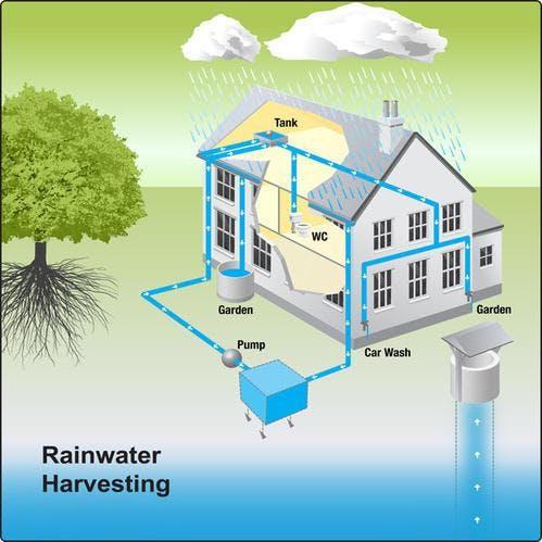 Pupu's Garden Rainwater Collection Hands-on W
