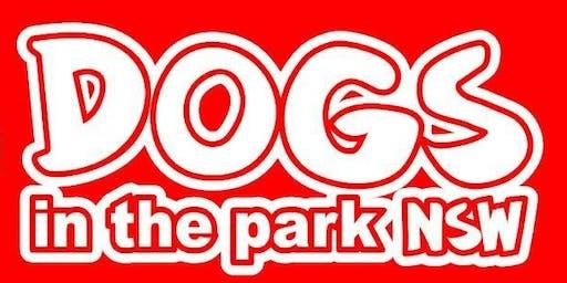 Dogs in the park Bathurst