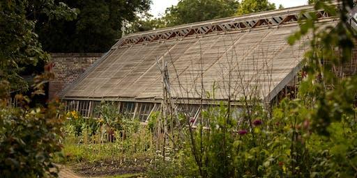 Kitchen Garden Planning for Autumn/Winter