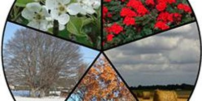 ""\""""Sacred Landscape"""" Supervision Coaching in Parks and Gardens - Insight and Wisdom through the Five Seasons.""400|200|?|en|2|24e6a9f5ac77ec6fd6bab5f9f86f0daa|False|UNLIKELY|0.2978437840938568