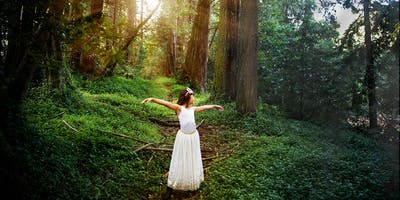 Portraits in the Redwoods | Sat., Nov 24th 2018  9a-11a