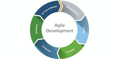 Agile Software Development tickets