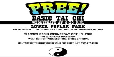 Tai Chi with Wind Clan Ninjas