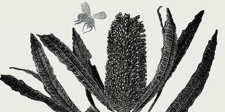 Educator's preview—2019 Geelong acquisitive print awards tickets