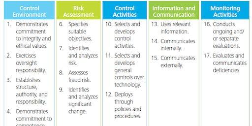 COSO Compliance Academy - Austin, Texas - Yellow Book, CIA & CPA CPE