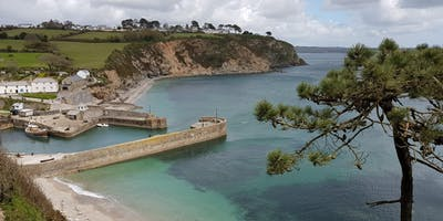 Guided Hike (4.5 hours) : South West Coast Path, Par & Charlestown, Cornwall