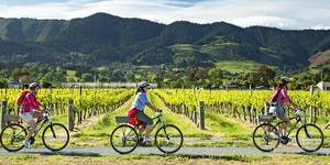China's New Tourists:  New Zealand and the Year of...