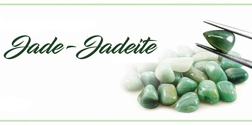 Jade 1 day Workshop - SkillsFuture Claimable