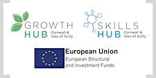 Cornwall &  Isles Scilly Growth & Skills Hub logo