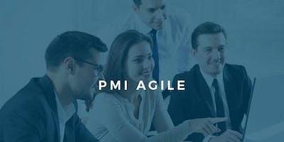 PMI-ACP® Certification Exam Prep Training Course in Newcastle , Australia