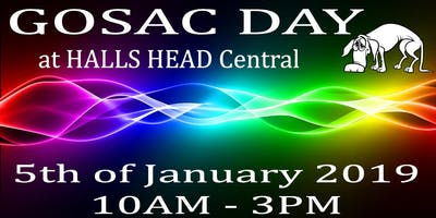 GOSAC DAY at HALLS HEAD Central