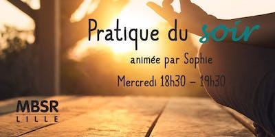 Pratique du soir avec Sophie - MBSR Lille