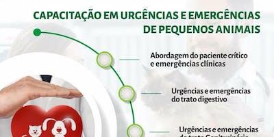 PRIMEIRO MÓDULO DO CURSO DE URGÊNCIAS E EMERGÊNCIAS EM PEQUENOS ANIMAIS