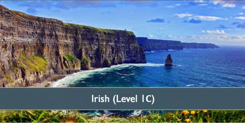 Irish (Level 1C) - January 2019
