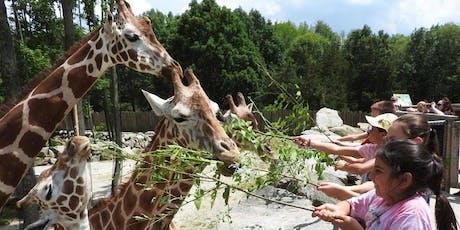 Summer Wild Adventure Program: Adventures & Ecosystems Grades 4-6 Session 1 tickets