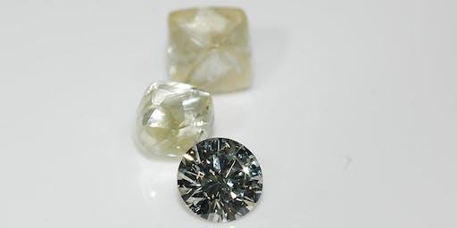 Diamond 1 Day Workshop - SkillsFuture claimable