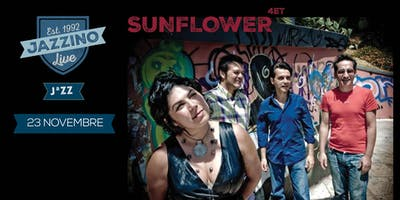 Sunflower Quartet Live at Jazzino