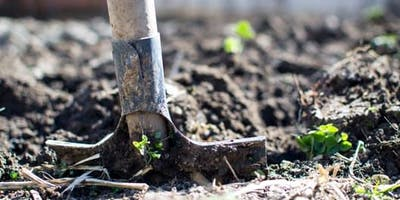 Gardening with Tracey Bool: No-dig gardening (Adults 16+) (Belconnen Library)