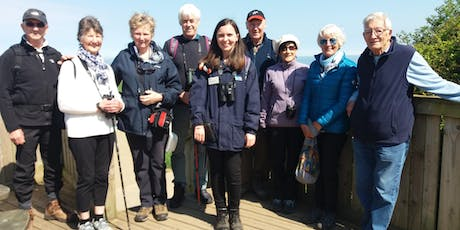 Wildlife Walks (including admission to RSPB Bempton Cliffs) tickets