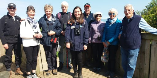 Wildlife Walks (including admission to RSPB Bempton Cliffs)
