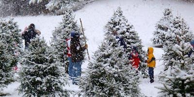 USO Christmas Tree Give Away Extravaganza