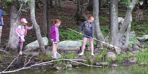 Summer Wild Adventure Program: Animal Antics Grades 2 & 3 Session 1