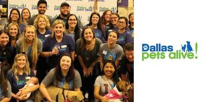 Dallas Pets Alive! New Volunteer Orientation