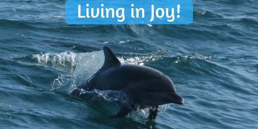 Copy of Release Fear and Anger easily. Learn to live in Joy like the Dolphins.