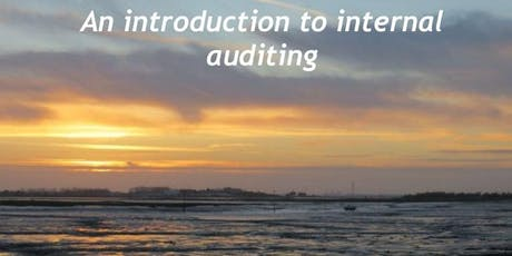 Internal Audit 101: Introduction to Internal Auditing - Pleasanton, CA - Yellow Book, CIA & CPA CPE  tickets