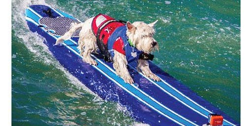World Dog Surfing Competition: Ball-Fetch-in-Water & Frisbee Registration - 4th Annual