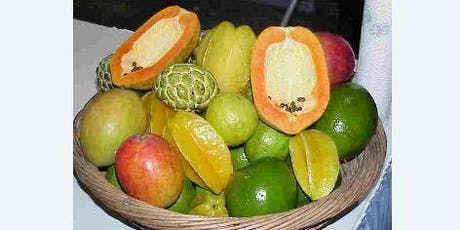 Tropical Fruit in the Home Garden in Central Florida tickets