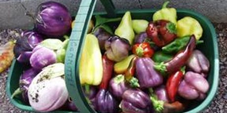Basics of Vegetable Gardening in Central Florida tickets