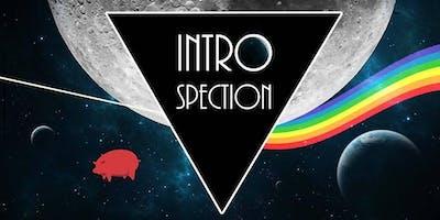 Introspection - Québec Pink Floyd Show