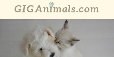 Lancement de la plateforme giganimals.com