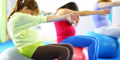 Pregnancy Pilates JAN 2019 Course