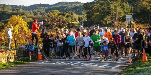 Sonoma 5k FUN Run Turkey Trot!