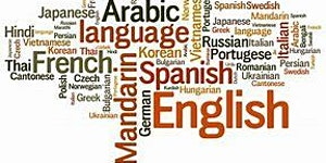Serving Newcomers with Limited Formal Education &...