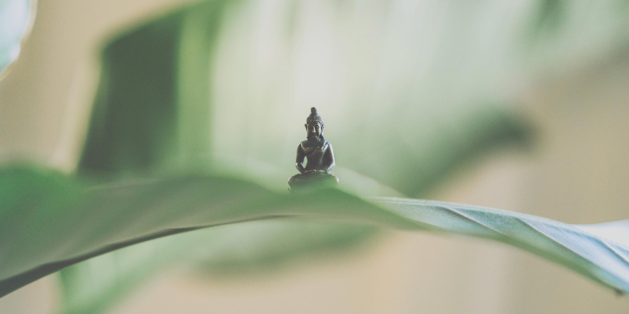 Free Meditation Class - 2 DEC 2018