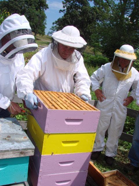 Beginning Beekeeping Rochester NY 2019