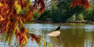 Stephen C Beachy Central Park Pond - EVENT #2