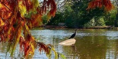 Stephen C Beachy Central Park Pond - Family Fish Camp Clinic - #3